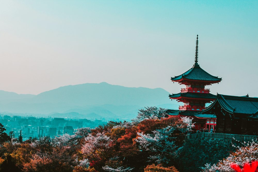travel to japan during college